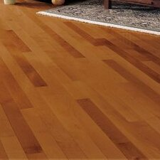 "Kennedale Prestige Plank 3-1/4"" Solid Maple Hardwood Flooring in Semi Gloss Cinnamon"