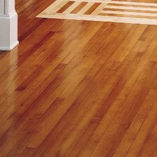 "Kennedale Strip 2-1/4"" Solid Maple Hardwood Flooring in Semi Gloss Cinnamon"