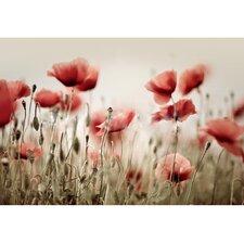 """Leinwandbild """"Poppy Field"""" von Nailia Schwarz, Originalgemaelde"""