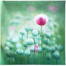 """Leinwandbild """"Poppy Seed"""" von Moqui, Grafikdruck"""