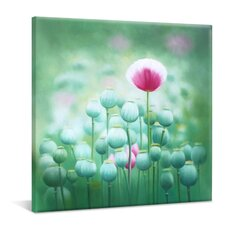"Leinwandbild ""Poppy Seed"", Originalgemälde"