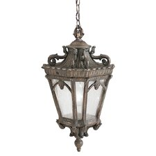 Tournai 1 Light Hanging Lantern