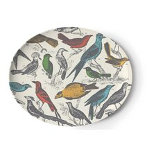 Ornithology Platter
