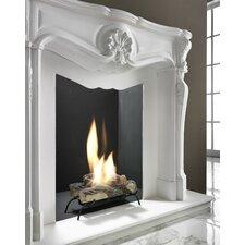 Bio-Ethanol Fuel Fireplace