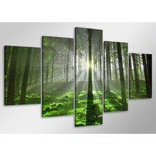 5-tlg. Leinwandbild-Set Guadalupe Ridge Forest, Fotodruck