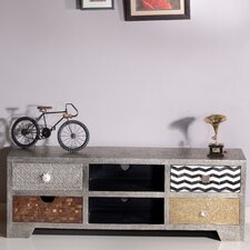 Metal & Bone TV Stand