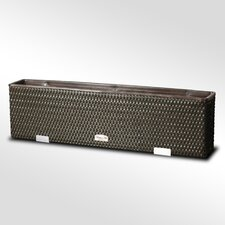Blumenkasten Exclusive Bere Rectangular