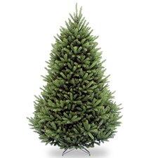 Weston Fir Tree