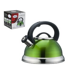 Modern green tea kettles allmodern for Alpine cuisine tea kettle