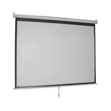 "Matte White 119"" diagonal Manual Projection Screen"