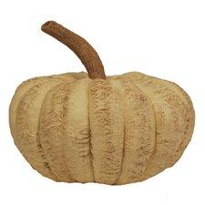 Long Stem Pumpkin