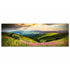 Glasbild Berge, Wiese, Blumen, Tal, Natur Fotodruck