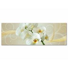 Glasbild Orchideen, Blumen, Blüten, Ornament Fotodruck