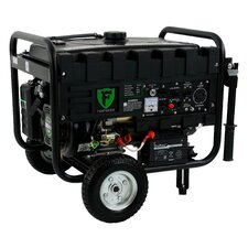 4400 Watt Portable Dual Fuel Generator