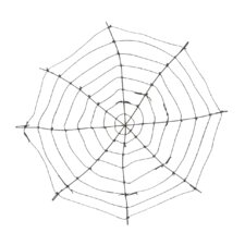 Spider Web (Set of 2)