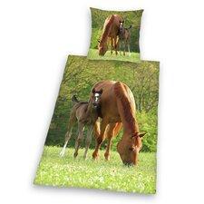 Bettwäsche-Set Young Collection mit Flanell aus 100% Baumwolle (Flanell)