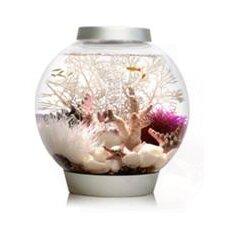 Classic Aquarium Bowl