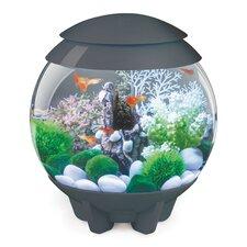 Halo Aquarium Bowl
