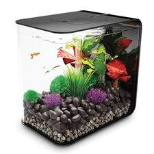 Flow Aquarium Tank