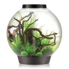 28 Gallon Classic Aquarium Bowl