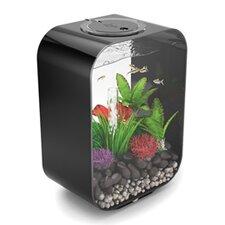 4 Gallon Life Aquarium Tank