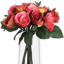 Rose Plant Bunch (Set of 2)