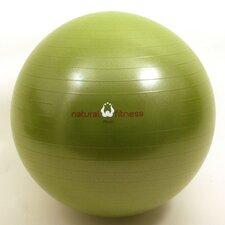 Burst Resistant Exercise Ball