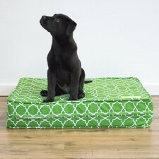 "Green 5"" Thick Soft/Firm Reversible Comfort Gel Memory Foam Orthopedic Dog Bed"