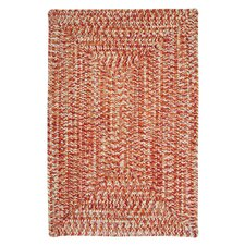 Catalina Fireball Indoor/Outdoor Area Rug
