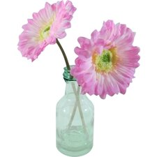 Gerbera Daisy in Glass Vase Faux Floral