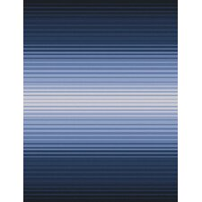 Indus Valley Navy Striped Area Rug