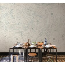 Journeys  Isobars Abstract Wall Mural