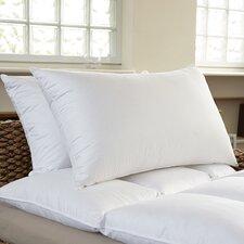 Premium Standard Bed Pillow (Set of 2)