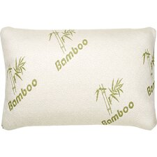 Hypoallergenic Bamboo Rayon Memory Foam Bed Pillow (Set of 2)
