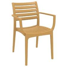 Nikoleta Dining Arm Chair (Set of 4)