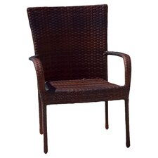 Cybill Outdoor Wicker Chair (Set of 2)
