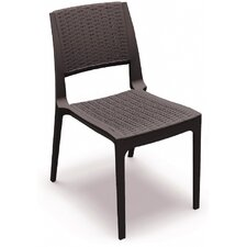Kassiopeia Dining Arm Chair (Set of 2)