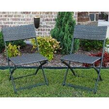 Artiaga Folding Resin Wicker Patio Chair (Set of 2)