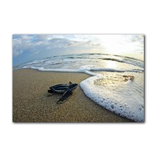 Turtle Leatherback Wave Watch by Christopher Doherty Photographic Print on Canvas