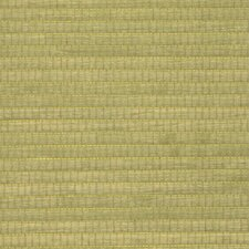 "Wood Veneer Grasscloth 18' x 36"" Stripes Wallpaper"