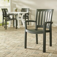 Snake River Stacking Dining Arm Chair (Set of 4)
