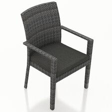 District Dining Arm Chair with Cushion (Set of 2)