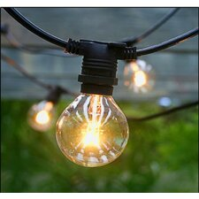 Vintage Commercial Patio String Lights with 25 Edison Light Bulbs