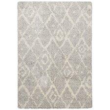 Teppich Color Shag Young Fashion in Grau / Beige