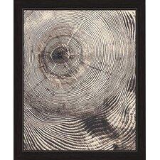 Wood Grain Texture Framed Graphic Art