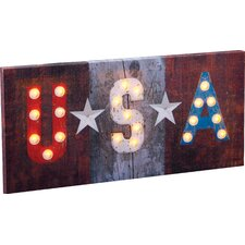 Lighted USA Graphic Art Plaque