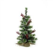 2' Frosted Pine Artificial Christmas Tree with 20 Clear LED Lights