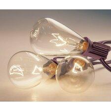Edison String Lighting