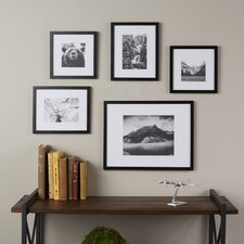 Wayfair Basics 5 Piece Picture Frame Set
