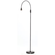 "Prospect 56"" LED Floor Lamp with Novelty Shade"